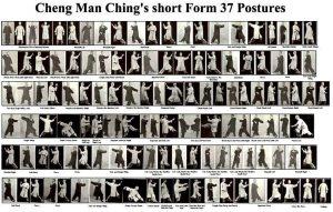 Cheng Man Ching: forma 37